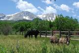 1601 Sopris Mountain Ranch Road - Photo 38