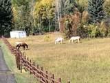 1705 County Road 241 - Photo 42