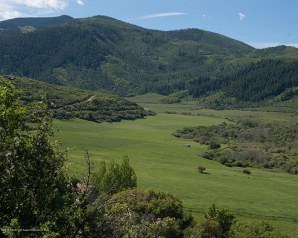 2058 Woody Creek Road, Woody Creek, CO 81656 (MLS #144824) :: McKinley Sales Real Estate