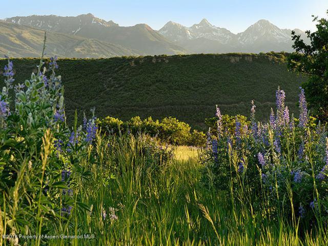 Tbd Woody Creek Road, Woody Creek, CO 81656 (MLS #144826) :: McKinley Sales Real Estate