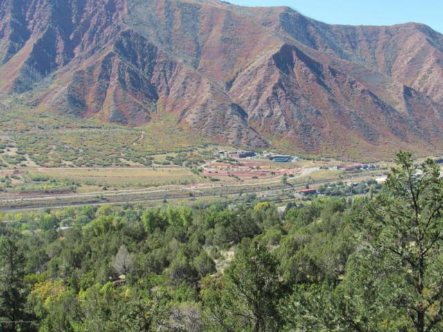 716 Silver Oak Drive, Glenwood Springs, CO 81601 (MLS #146697) :: McKinley Sales Real Estate