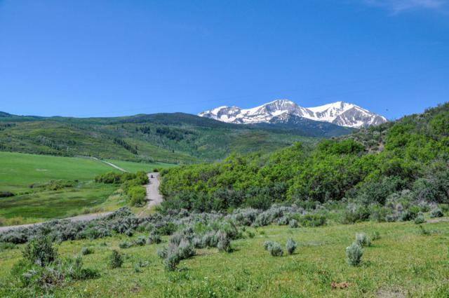TBD W Sopris Creek Road, Basalt, CO 81621 (MLS #149098) :: McKinley Sales Real Estate