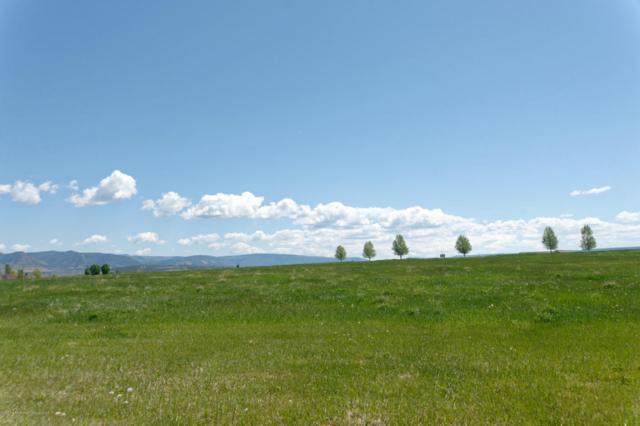1300 Flag Creek Drive, Meeker, CO 81641 (MLS #151248) :: McKinley Sales Real Estate