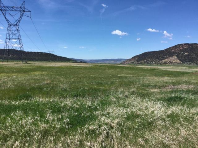1050 Flag Creek Drive, Meeker, CO 81641 (MLS #151291) :: McKinley Sales Real Estate