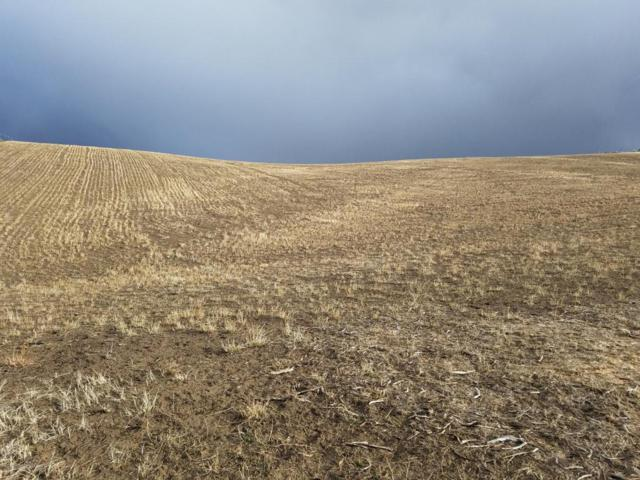 TBD County Road 30, Craig, CO 81625 (MLS #151488) :: McKinley Sales Real Estate