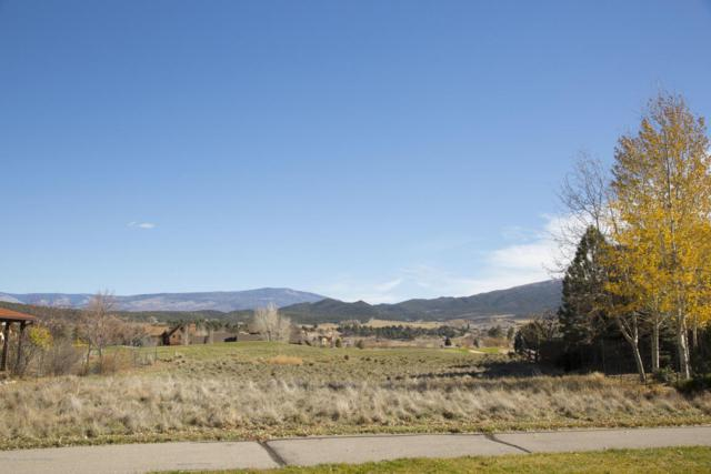 700 Perry Ridge, Carbondale, CO 81623 (MLS #152177) :: McKinley Sales Real Estate