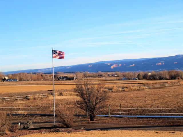 1749 14 Road, Loma, CO 81524 (MLS #152309) :: McKinley Sales Real Estate