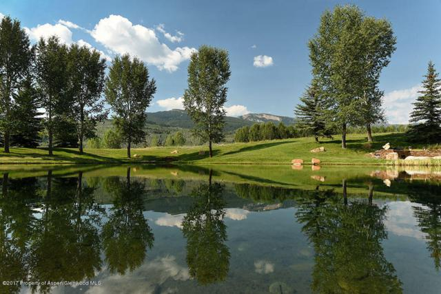 1214 Owl Creek Ranch Road, Aspen, CO 81611 (MLS #152424) :: McKinley Sales Real Estate