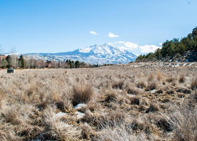 645 Perry Ridge, Carbondale, CO 81623 (MLS #152954) :: McKinley Sales Real Estate