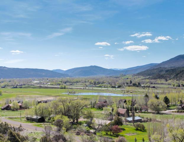 360 Cerise Ranch Road, Carbondale, CO 81623 (MLS #152955) :: McKinley Real Estate Sales, Inc.