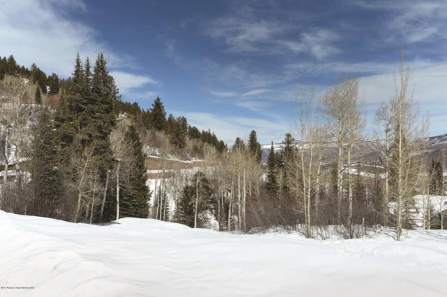 TBD Pfister Drive, Aspen, CO 81611 (MLS #153059) :: McKinley Real Estate Sales, Inc.