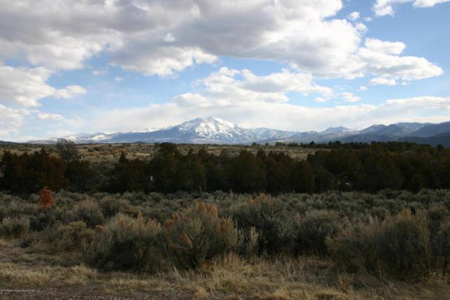 1965 Elk Springs Drive, Glenwood Springs, CO 81601 (MLS #153139) :: McKinley Sales Real Estate