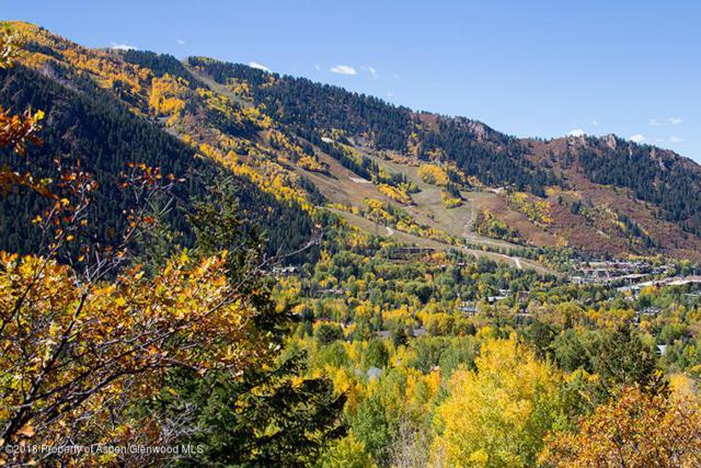 813 Mcskimming Road, Aspen, CO 81611 (MLS #154490) :: McKinley Sales Real Estate