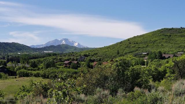 597 Old Midland Spur, Glenwood Springs, CO 81601 (MLS #154541) :: McKinley Sales Real Estate