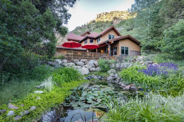 1558 County Road 129, Glenwood Springs, CO 81601 (MLS #154613) :: McKinley Sales Real Estate