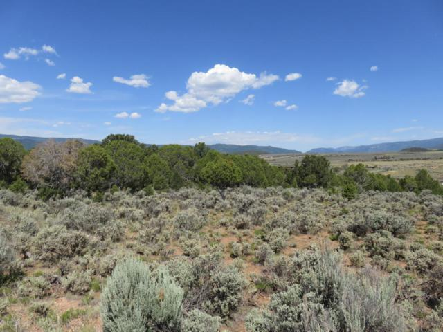 0030 Little Wood Lane, Glenwood Springs, CO 81601 (MLS #154631) :: McKinley Sales Real Estate