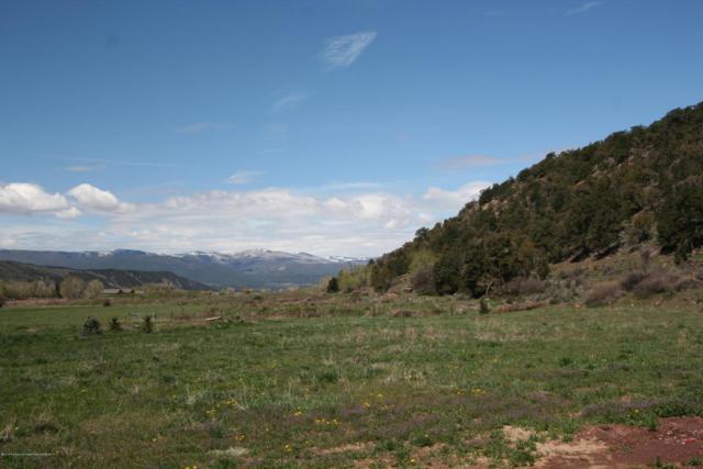 0022 Sunflower, Carbondale, CO 81623 (MLS #154681) :: McKinley Sales Real Estate