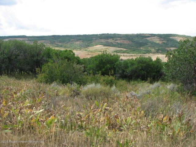 4295 B Timberlane Drive, Craig, CO 81625 (MLS #154688) :: McKinley Sales Real Estate