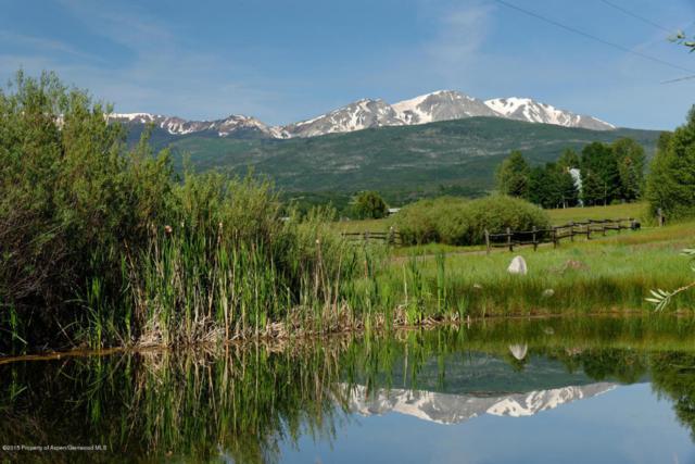 6890 E Sopris Creek Road, Snowmass, CO 81654 (MLS #154697) :: McKinley Sales Real Estate