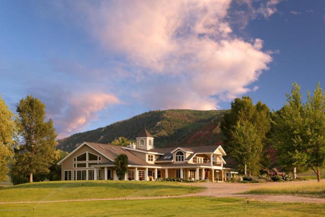 1088 Hooks Spur Road, Basalt, CO 81621 (MLS #154975) :: McKinley Sales Real Estate