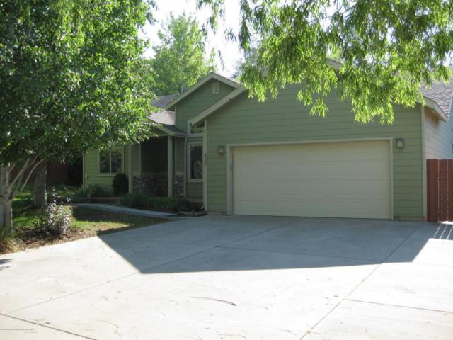 938 Red Tail Lane, Silt, CO 81652 (MLS #155058) :: McKinley Sales Real Estate