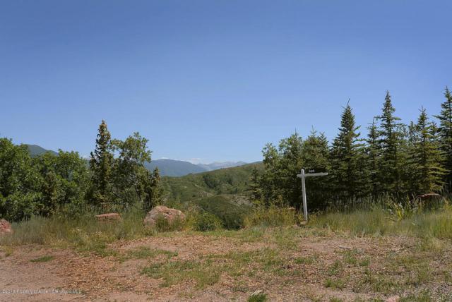 148 Tabula Rasa Lane, Aspen, CO 81611 (MLS #155070) :: McKinley Sales Real Estate