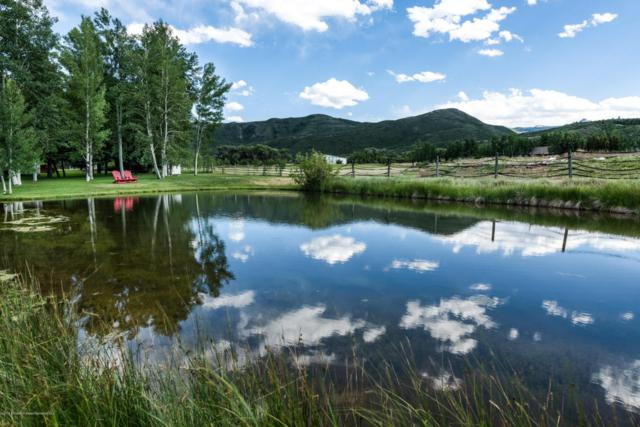1151 Capitol Creek Road, Snowmass, CO 81654 (MLS #155116) :: McKinley Sales Real Estate