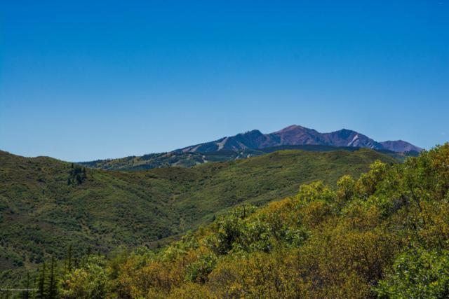145 Tabula Rasa Lane, Aspen, CO 81611 (MLS #155568) :: McKinley Sales Real Estate