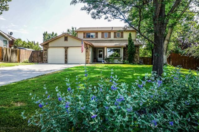 62 Hackberry Lane, Battlement Mesa, CO 81635 (MLS #155635) :: McKinley Real Estate Sales, Inc.