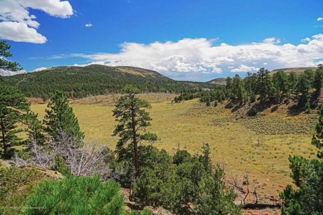 0 County Road 10, Maybell, CO 81640 (MLS #155787) :: McKinley Sales Real Estate