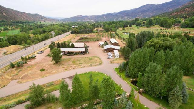 100 & 165 Hoaglund Ranch Road, Basalt, CO 81621 (MLS #155885) :: McKinley Real Estate Sales, Inc.