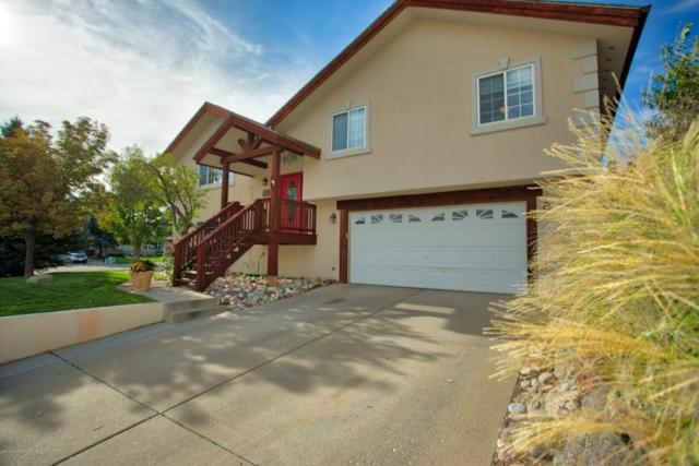 841 Hickory Drive, Rifle, CO 81650 (MLS #155926) :: McKinley Real Estate Sales, Inc.