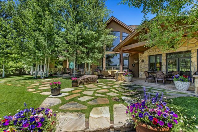 494 E Diamond A Ranch Road, Carbondale, CO 81623 (MLS #155951) :: McKinley Sales Real Estate
