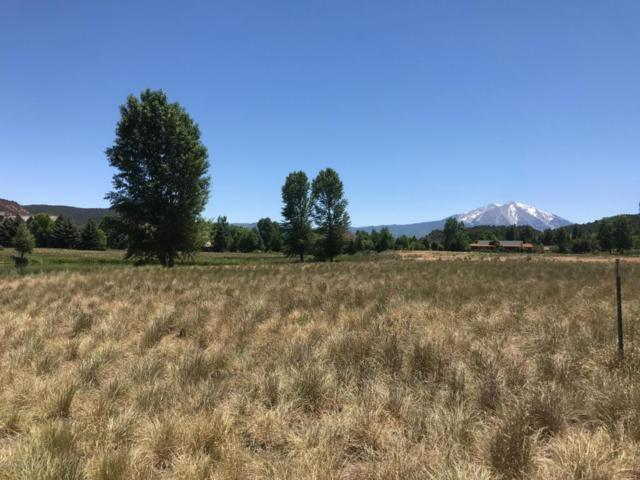 TBD Sundance Trail, Carbondale, CO 81623 (MLS #156015) :: McKinley Sales Real Estate