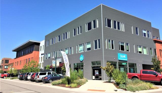 350 Market Street #308, Basalt, CO 81621 (MLS #156033) :: McKinley Sales Real Estate