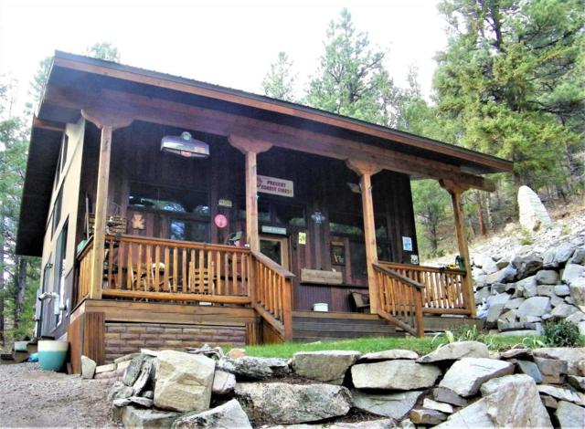 5003 County Road 3, Marble, CO 81623 (MLS #156537) :: McKinley Sales Real Estate