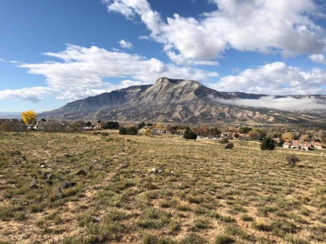 307 Eagle Ridge Drive, Battlement Mesa, CO 81635 (MLS #156719) :: McKinley Real Estate Sales, Inc.
