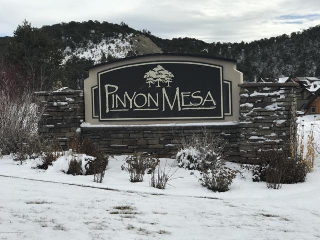 168 Sage Meadow Road, Glenwood Springs, CO 81601 (MLS #156984) :: McKinley Real Estate Sales, Inc.