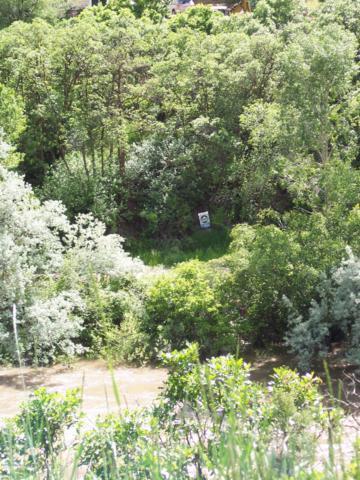 Tbd Hager Lane, Glenwood Springs, CO 81601 (MLS #157403) :: McKinley Real Estate Sales, Inc.