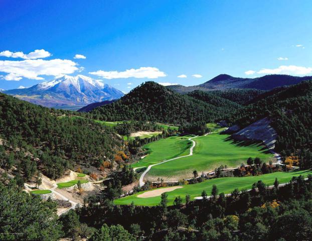 0402 Blue Heron Drive, Glenwood Springs, CO 81601 (MLS #157839) :: Aspen Snowmass | Sotheby's International Realty