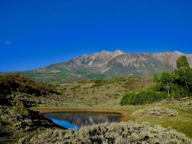 262 Co Rd 265, Somerset, CO 81434 (MLS #158143) :: McKinley Real Estate Sales, Inc.
