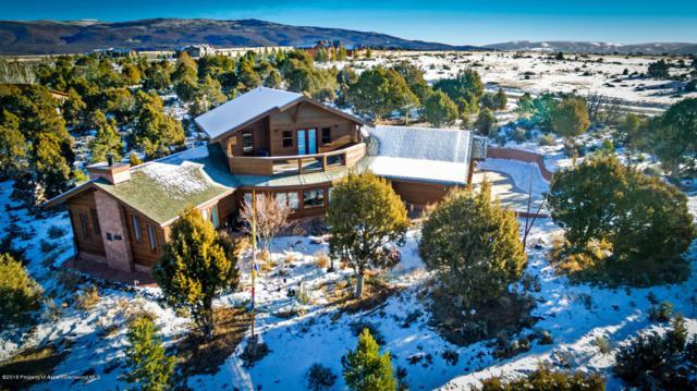 347 Wood Nymph Lane, Glenwood Springs, CO 81601 (MLS #158239) :: McKinley Real Estate Sales, Inc.