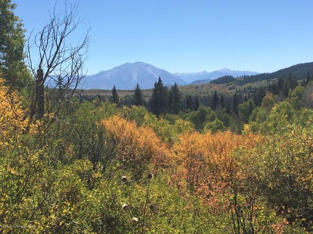 TBD Mountain Springs Road, Glenwood Springs, CO 81601 (MLS #158373) :: Roaring Fork Valley Homes