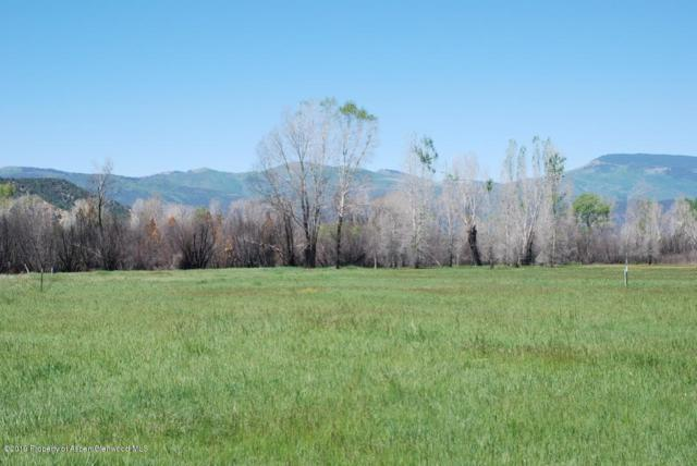 34 St Finnbar Farm Road, Carbondale, CO 81623 (MLS #158874) :: McKinley Real Estate Sales, Inc.