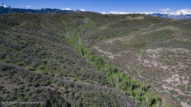 Tbd Rabbit Way, Snowmass, CO 81654 (MLS #158920) :: McKinley Real Estate Sales, Inc.