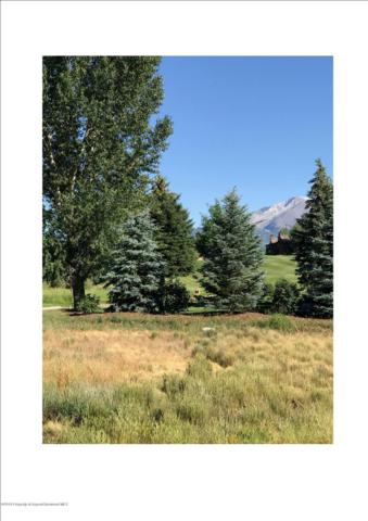 84 Indian Paint Brush, Carbondale, CO 81623 (MLS #159239) :: McKinley Real Estate Sales, Inc.