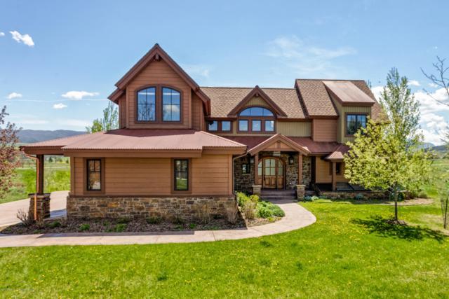 166 Sopris Mesa Drive, Carbondale, CO 81623 (MLS #159245) :: McKinley Real Estate Sales, Inc.