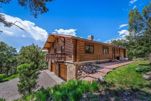 535 County Road 112, Carbondale, CO 81623 (MLS #159347) :: McKinley Real Estate Sales, Inc.