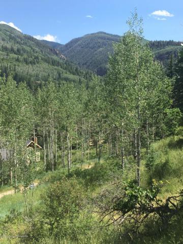 134 Bear Creek Lane, Redstone, CO 81623 (MLS #159710) :: Aspen Snowmass | Sotheby's International Realty