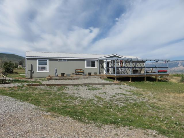 1255 Mustang Mesa Trail, Rifle, CO 81650 (MLS #160097) :: McKinley Real Estate Sales, Inc.